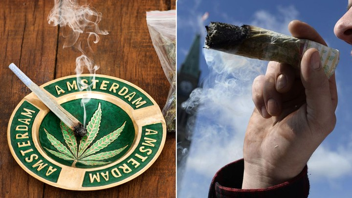 The Netherlands' Master Weed Growers Are Flocking to Canada