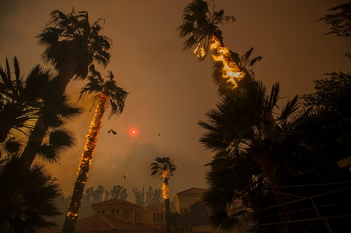 The Terrifying Future of California Wildfires: 'It's Going to Get Worse'