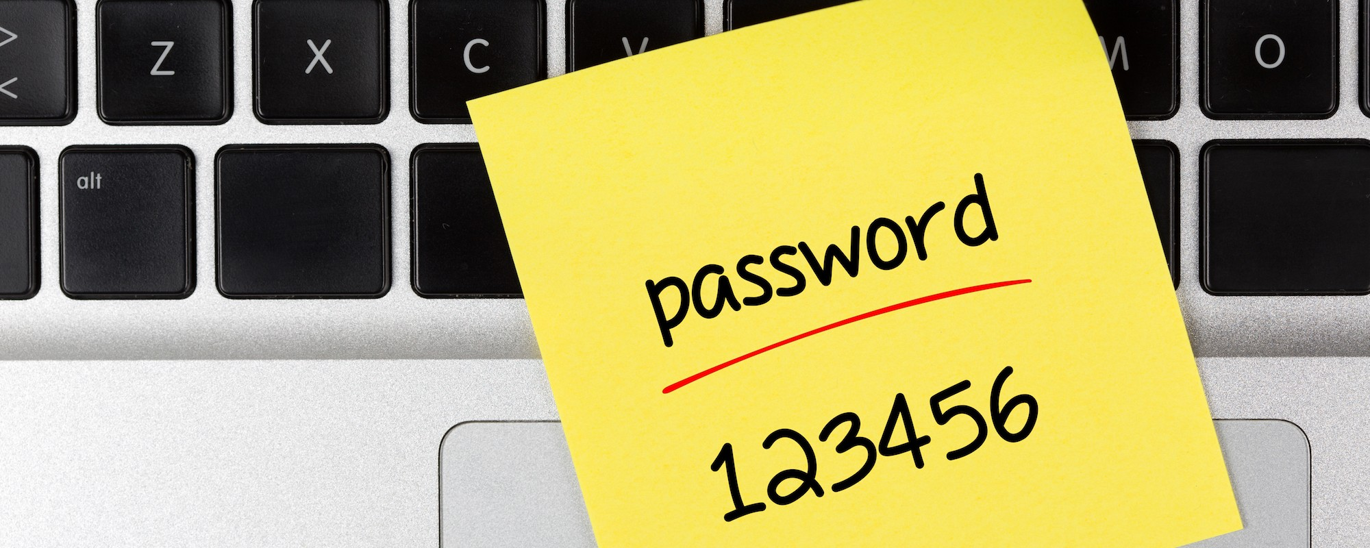Donald Is Now One Of The Top 25 Most Commonly Used Passwords