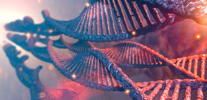 Just Hearing the Results of a DNA Test Can Make Your Body Act Differently