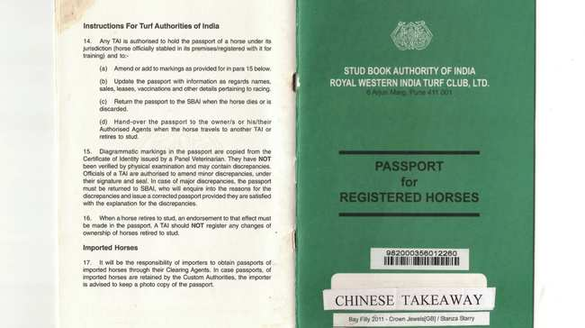 be6691af83b35 No Indian Race Horse Can Run Without a Passport - VICE