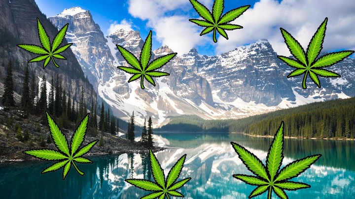 Canadian Businesses Are Cashing in with Luxury Weed Trips