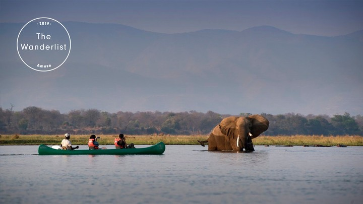 Canoe the Mana Pools National Park, Zimbabwe | The Wanderlist 2019