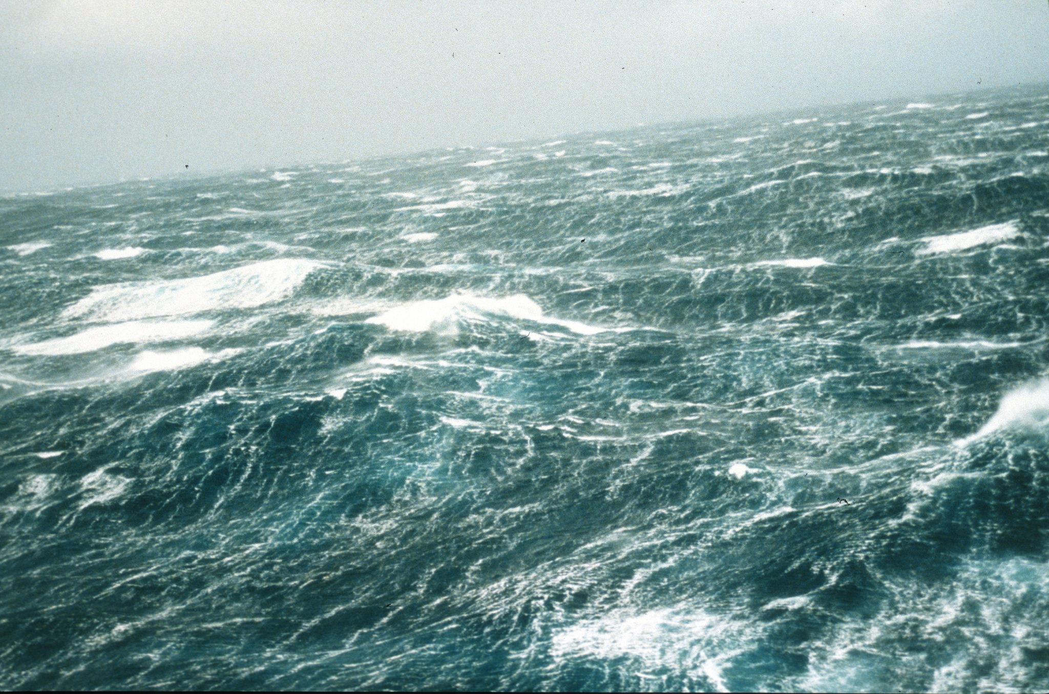 vice.com - Caroline Haskins - Climate Change Is Making Waves Stronger