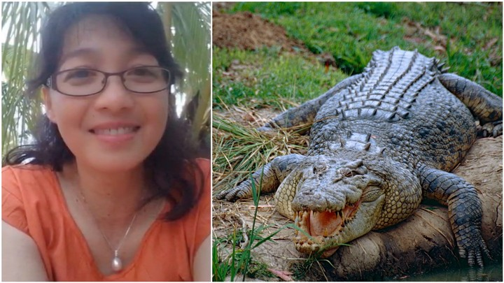 An Indonesian Scientist was Mauled to Death by her Boss' Pet Crocodile