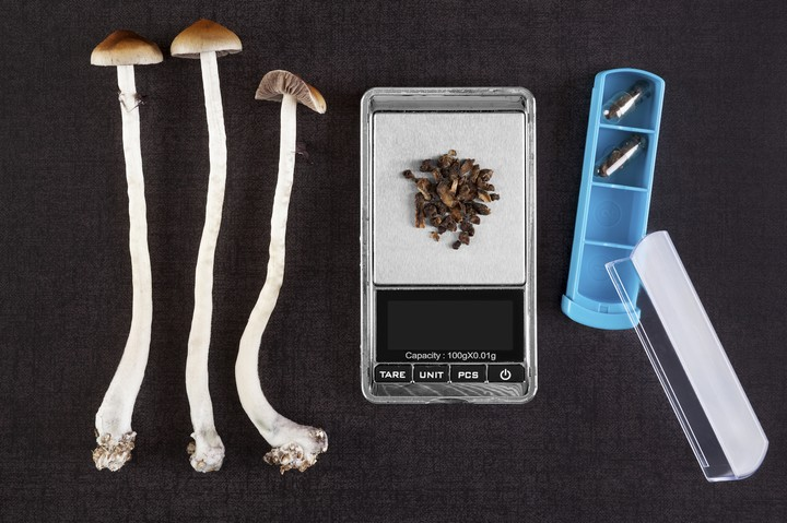 A Melbourne Hospital Will Trial Magic Mushroom Therapy for Dying Patients