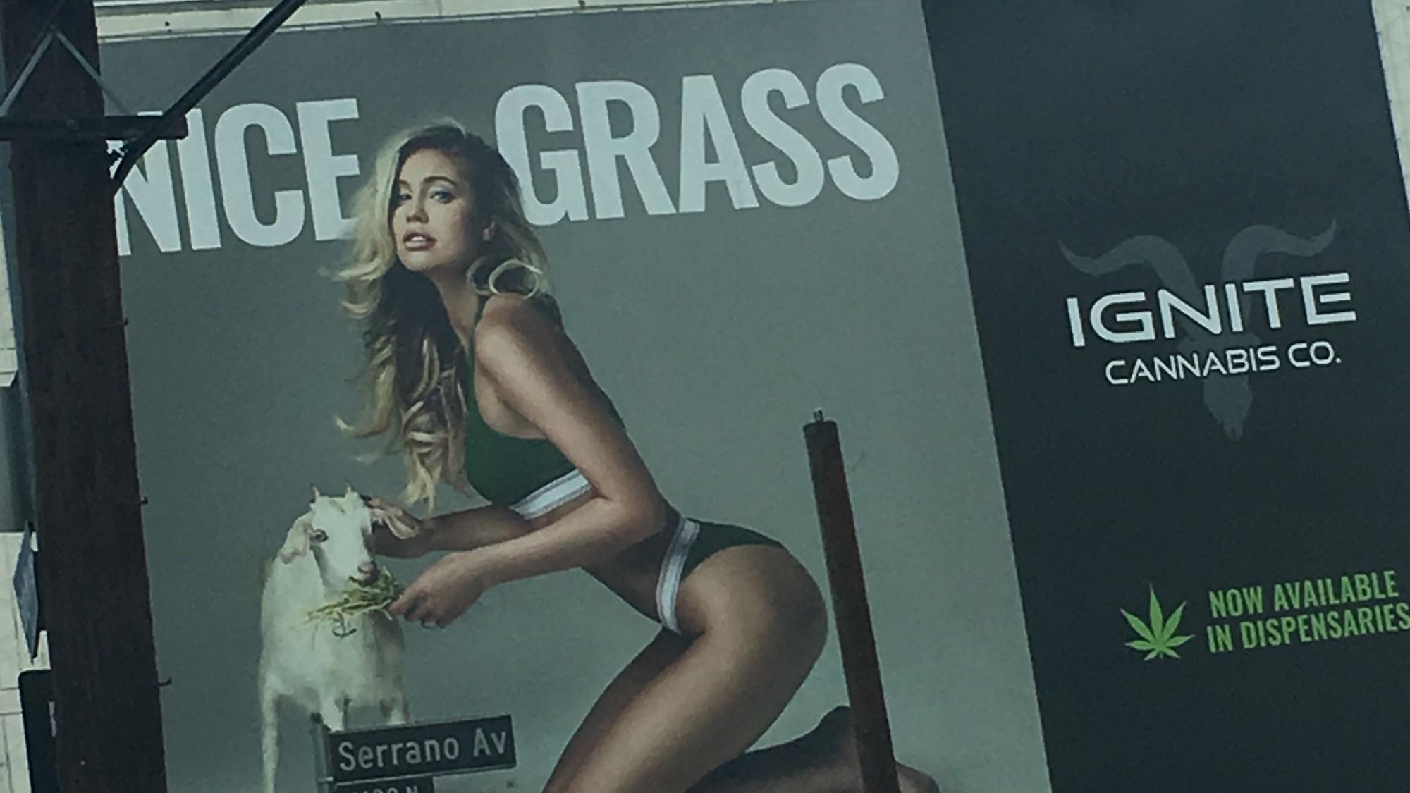 Dan Bilzerian's Weed Company Is Keeping Sexist Cannabis Ads