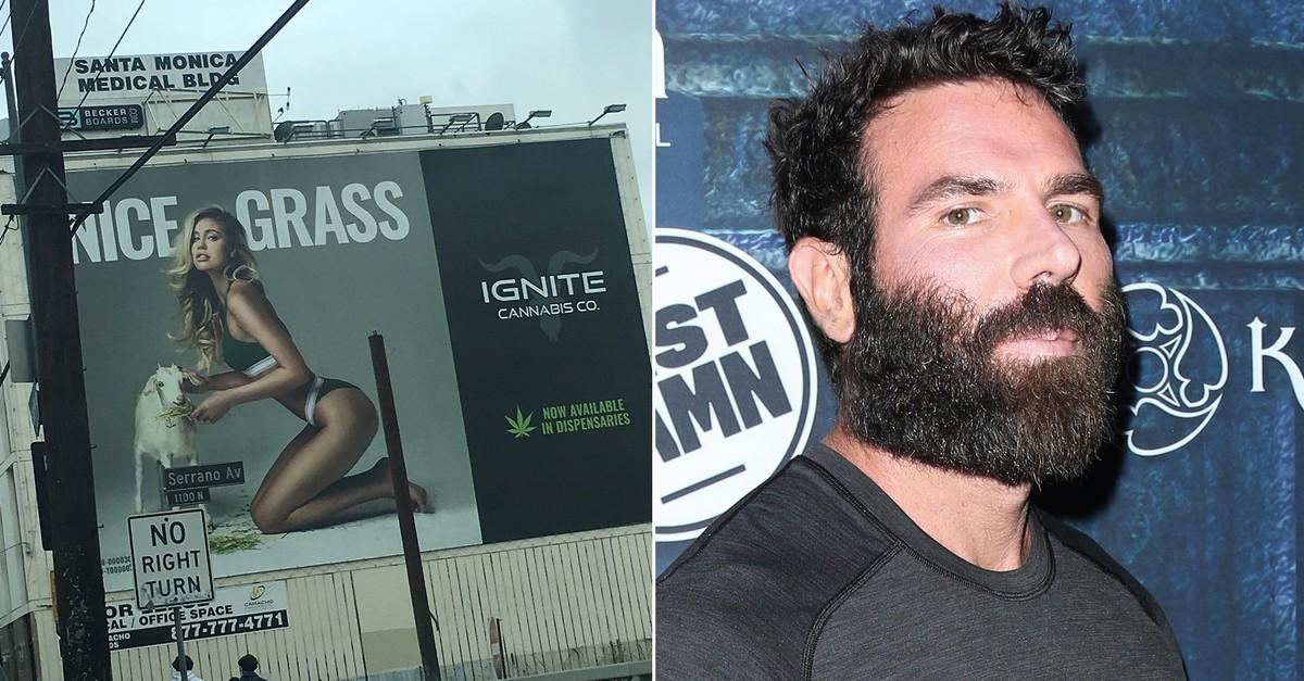 Dan Bilzerian's Weed Company Is Keeping Sexist Cannabis Ads Alive