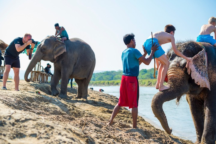 The Savagery of Selfies | These Photos Show How Cruel Elephant Tours Are