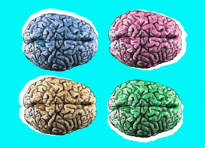 5 Things That Could Help You Improve Your Brain Function - VICE