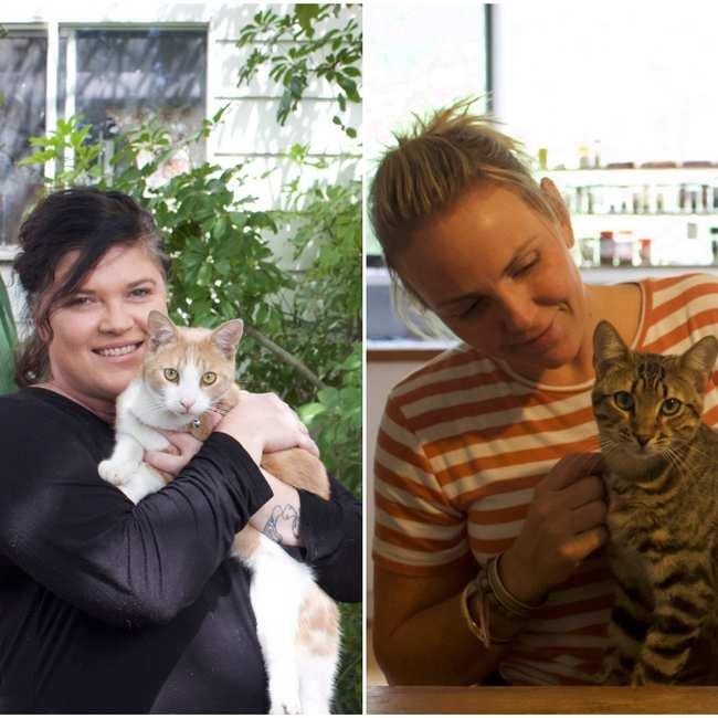 bb692454640b Cat Ladies μας Εξηγούν Γιατί οι Γάτες είναι Καλύτερες Από τους ...