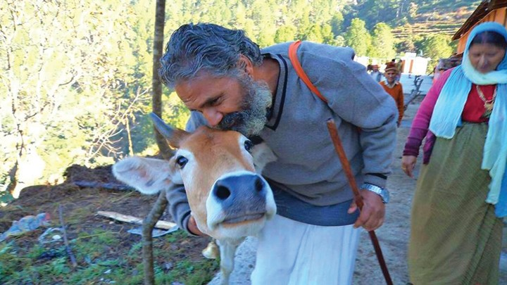 Meet the Politician Who Wants to Make the Cow 'India's National Mother'