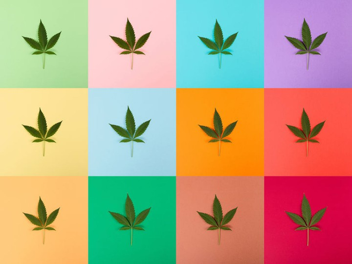 What It's Like to Tell Your Kids You Love Weed