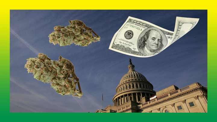 The Weed Industry Is Burning Millions on DC Lobbyists and Getting Nowhere - VICE