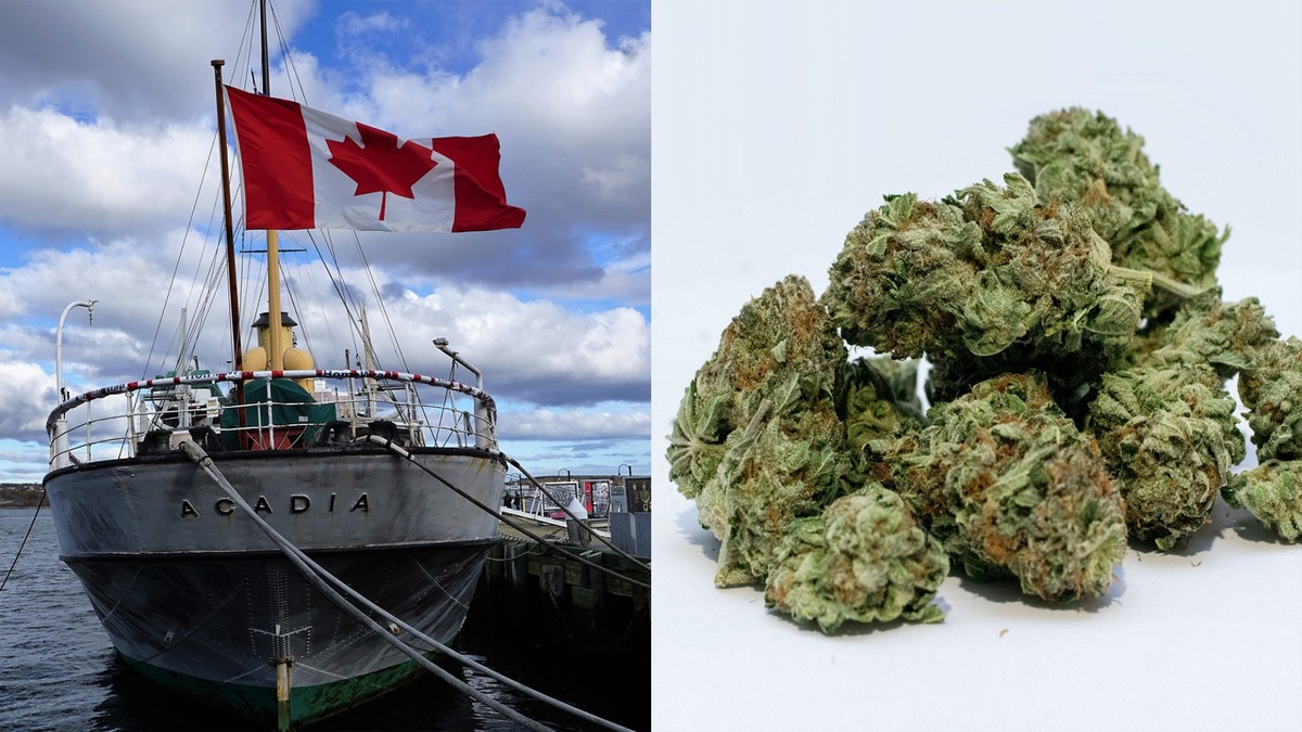 How Did 137 Kilos of Canadian Weed End Up in Hong Kong?