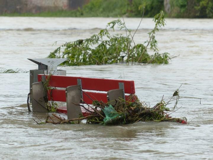 La nature connaît le pire déclin de l'histoire humaine, avertit l'ONU - VICE