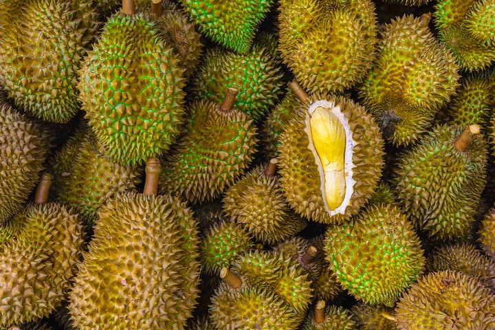 Australian Library Evacuated After People Confused Durian Smell for a Gas Leak