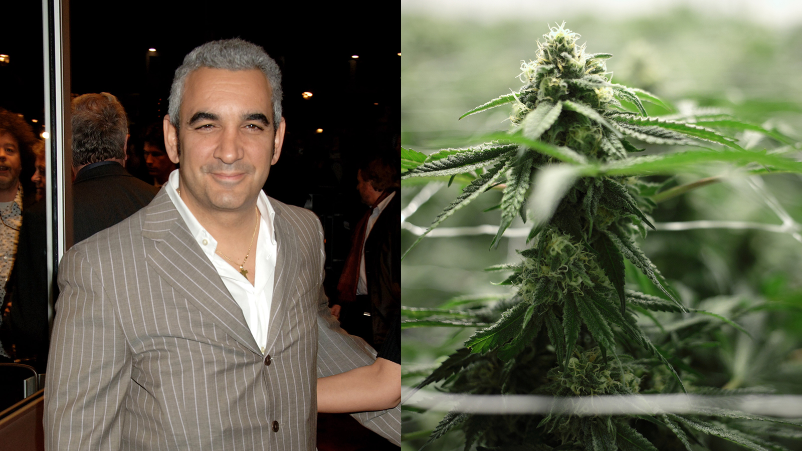 Coca-Cola Heir Billionaire Arrested for Allegedly Filling Plane with Weed Plants