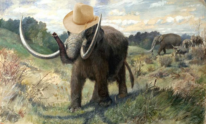 Teen Finds Second Mastodon Fossil on Iowa Farm in 30 Years - VICE