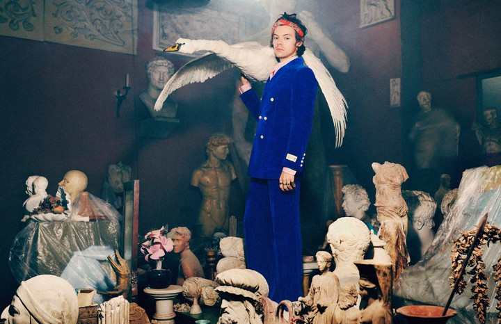 Harry Styles is back with a new Gucci campaign shot by Harmony Korine, and this time he's got a swan - i-D