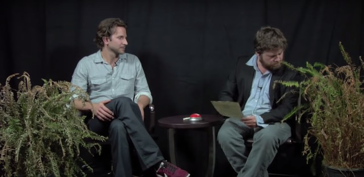We Asked an Expert if Ferns Will Survive the 'Between Two Ferns' Road Trip Netflix Movie - VICE