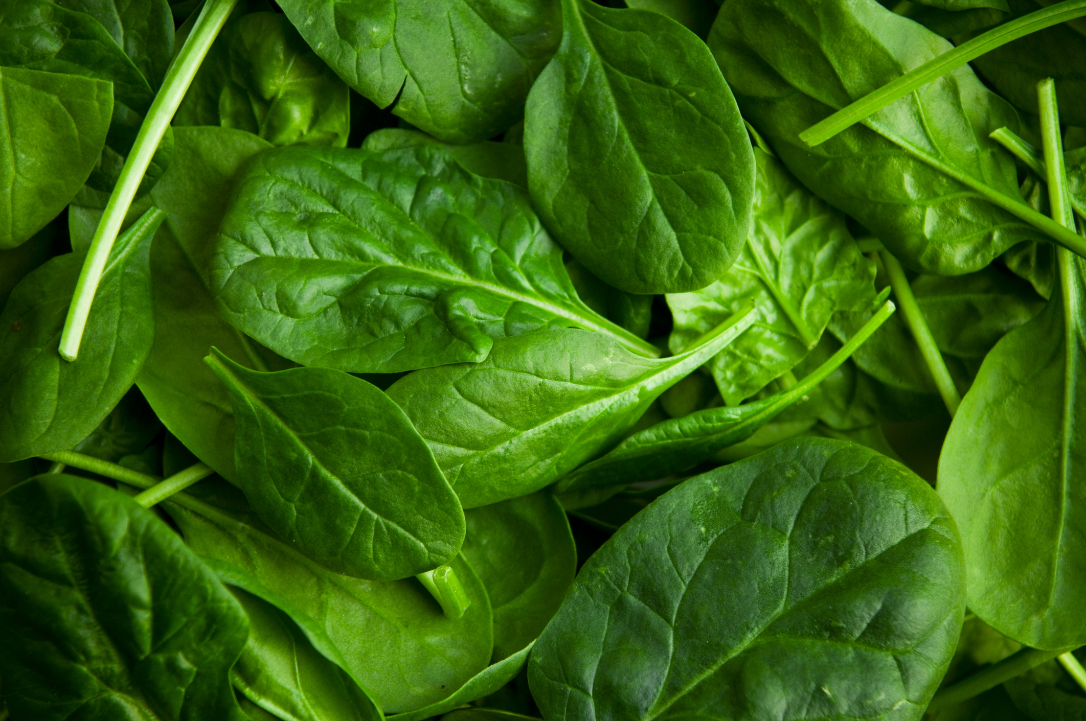 Scientists Say Chemical Found in Spinach Is Basically a Steroid