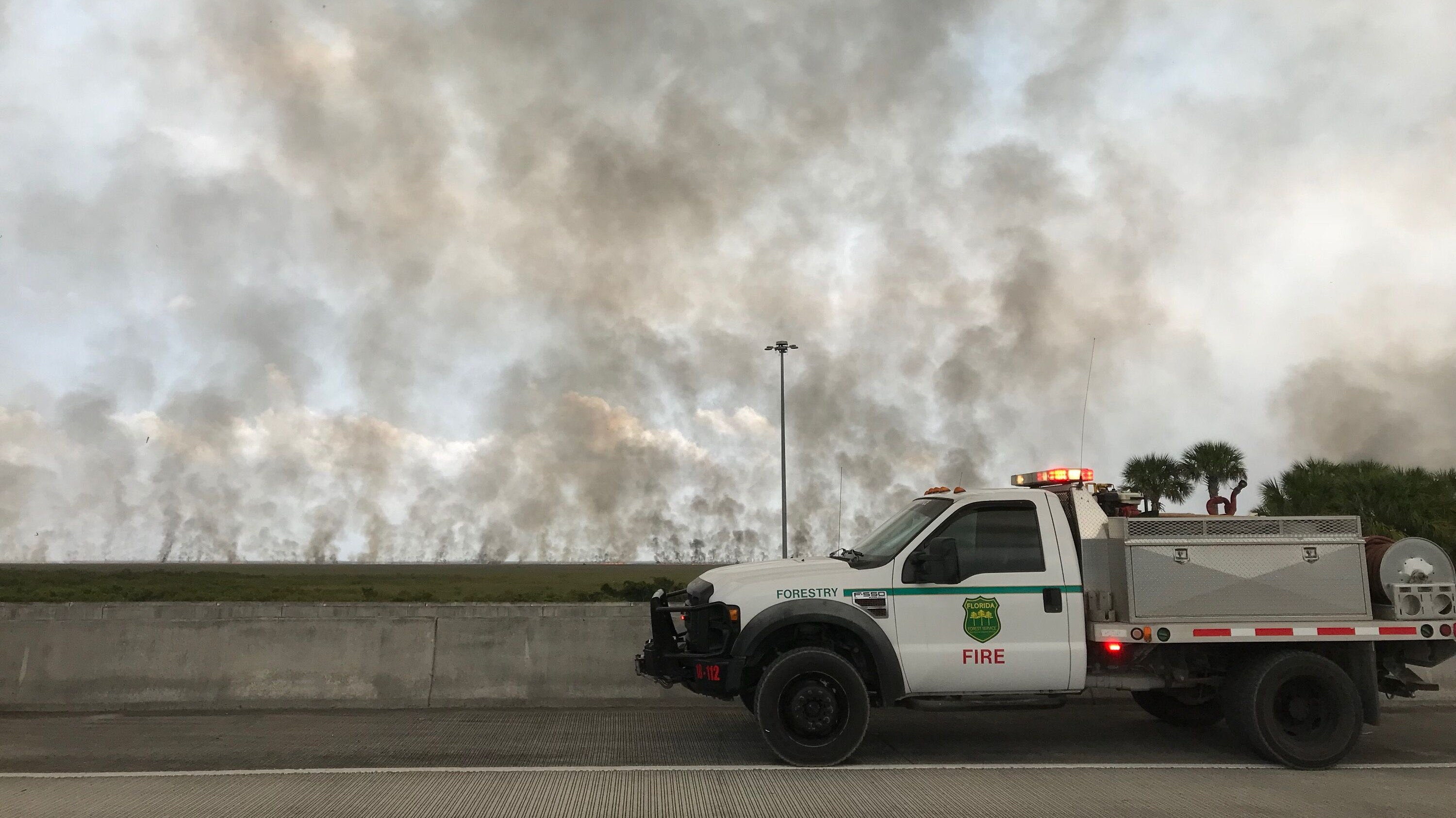 The Everglades Is on Fire, But It's Actually Fine