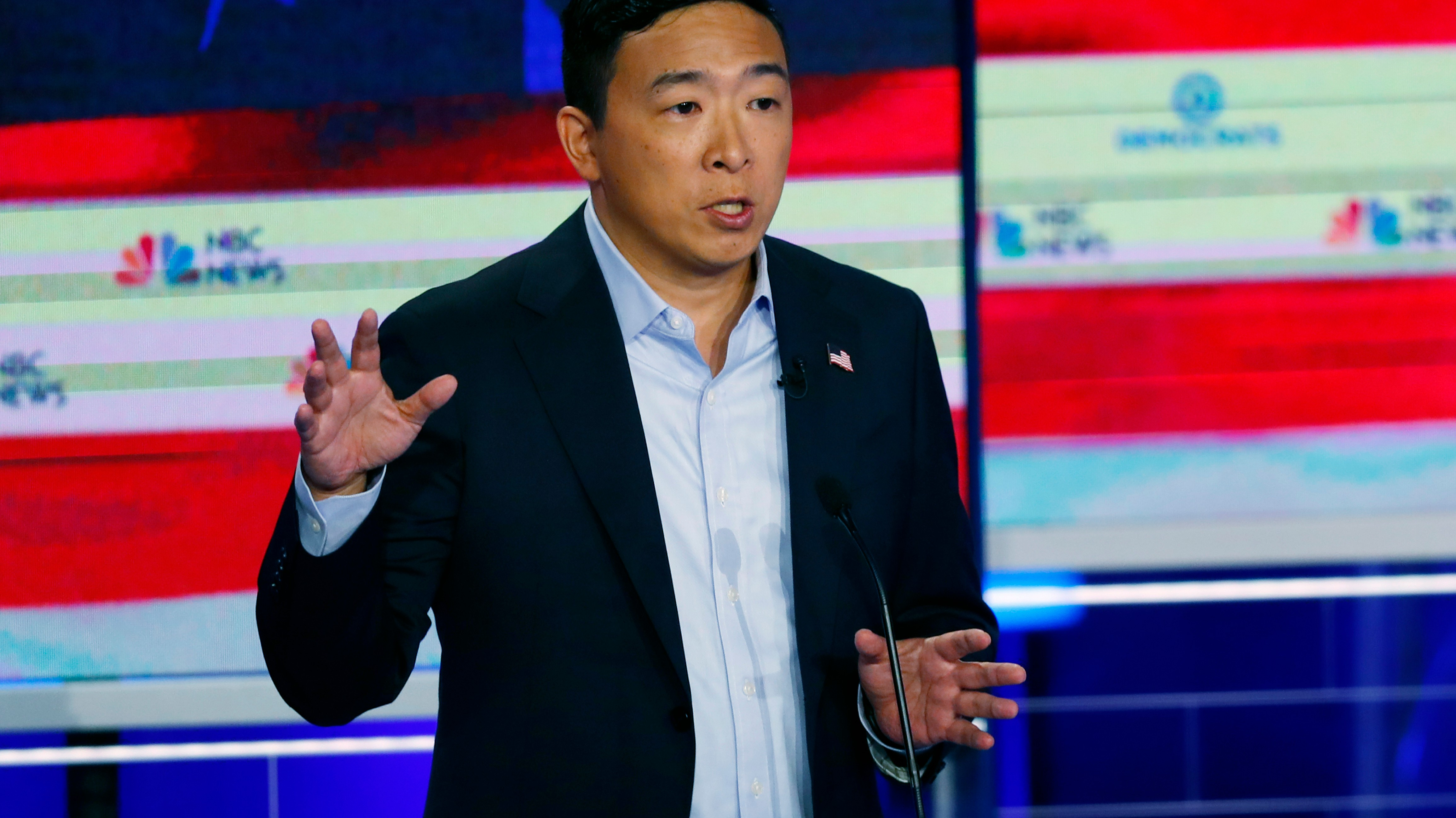 Image result for andrew yang democratic debate