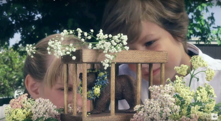 The 'Midsommar' Bear Toys Are the Perfect Gift for the Evil Cultists in Your Life - VICE