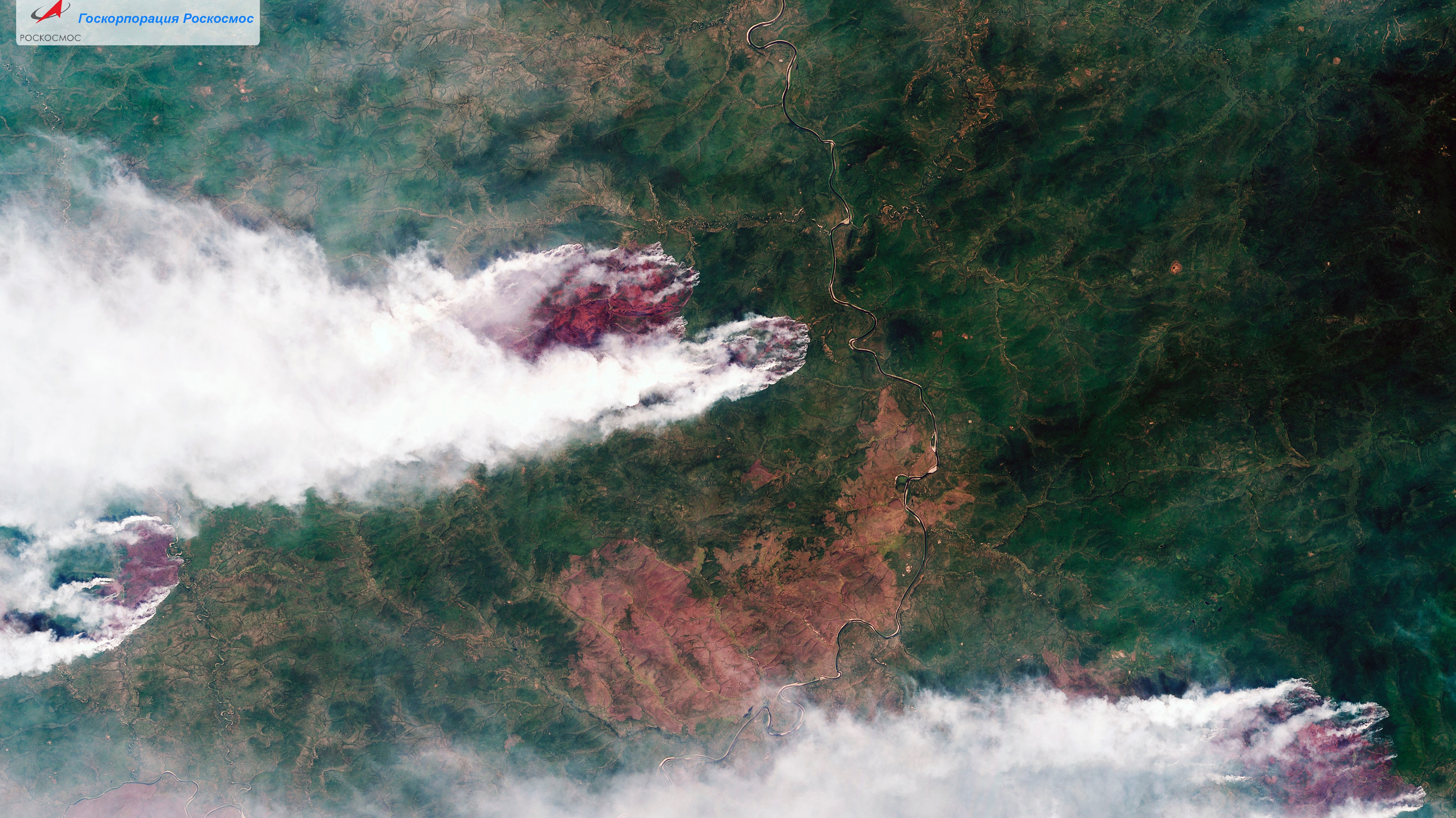 """Over 15 Thousand Square Miles of Siberia are on Fire and it's """"a Global Ecological Catastrophe"""""""