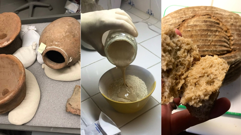 Dieser Typ hat Brot aus 4.500 Jahre alter Hefe gebacken – und es war köstlich - VICE