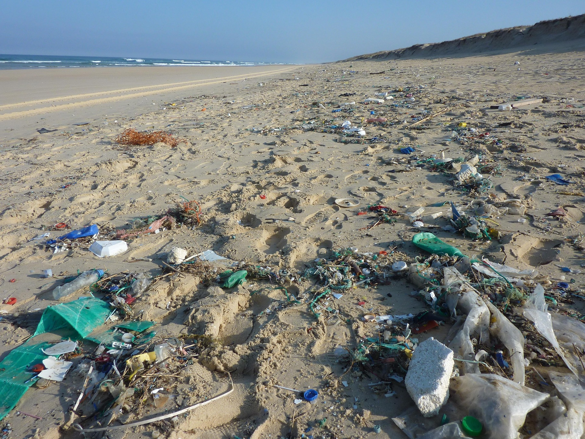 Dovremo aspettare ancora un po' per avere spiagge senza plastica in Italia - VICE