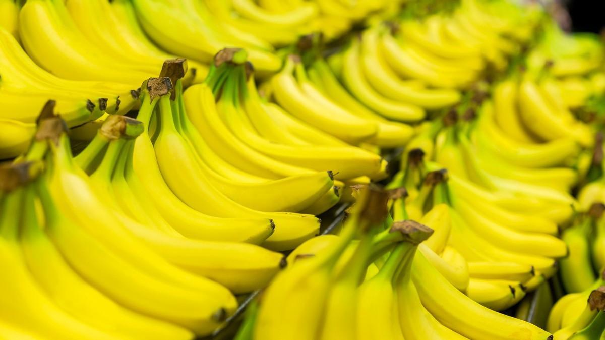 An Unstoppable Fungus Might Make Bananas Go Extinct