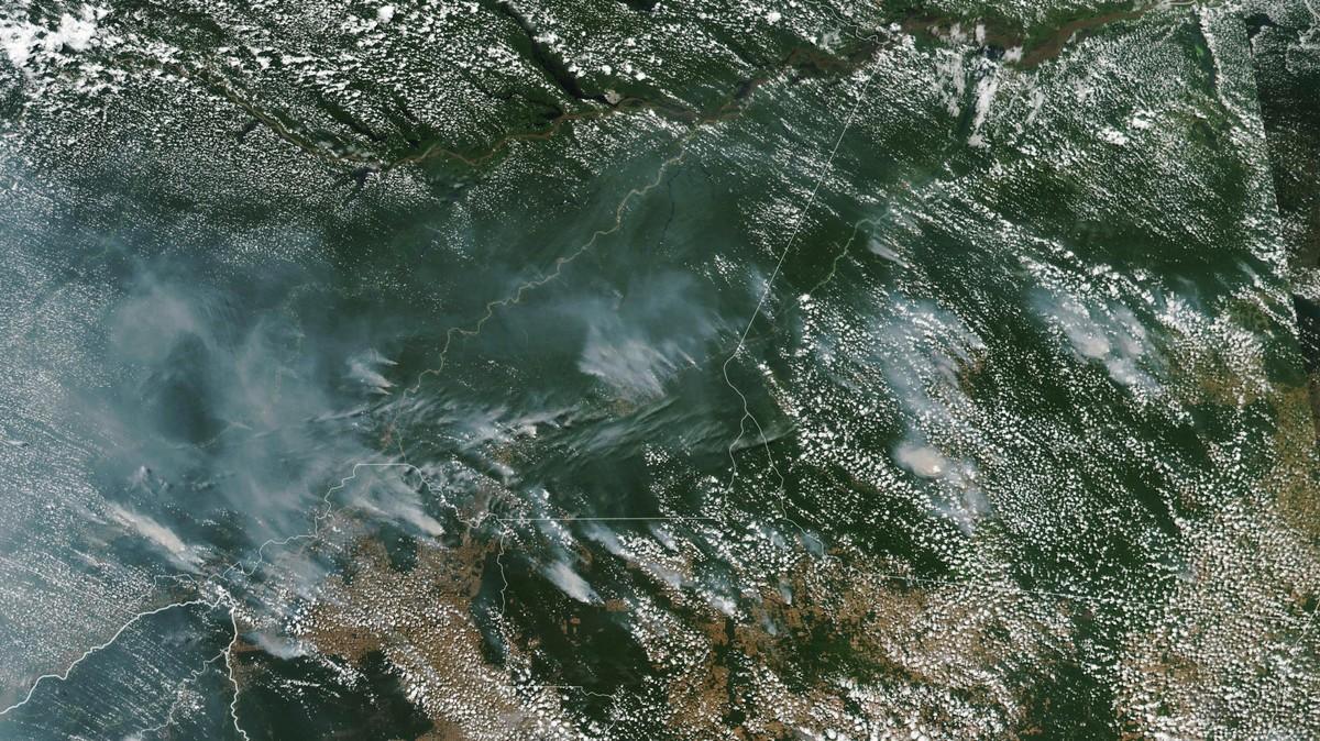 Bolsonaro ha dato la colpa degli incendi in Amazzonia alle ONG, ovviamente senza alcuna prova
