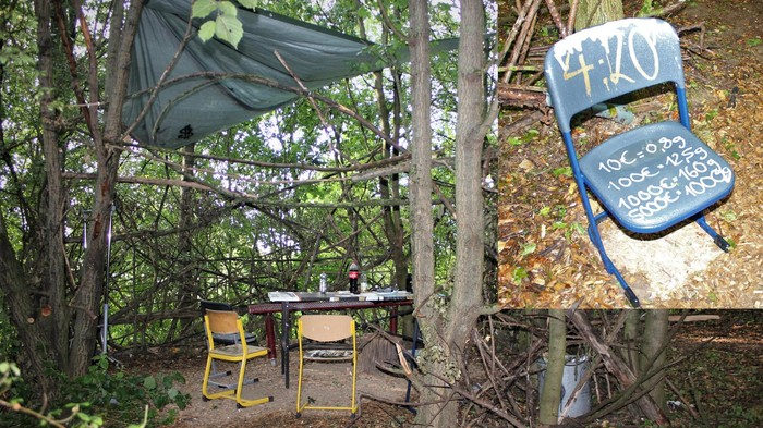 Grasdealer im Wald: Ist das ein Tatort oder schon Kunst? Eine Tiefenanalyse