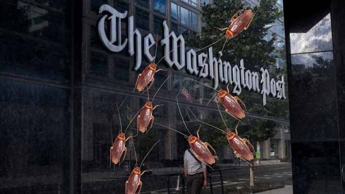 Media Is Crawling With Bugs