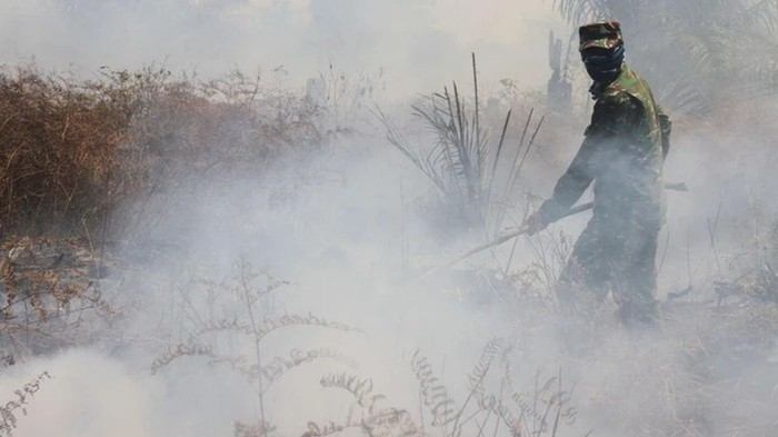 Indonesians Struggle with Daily Life as Forest Fires Rage On