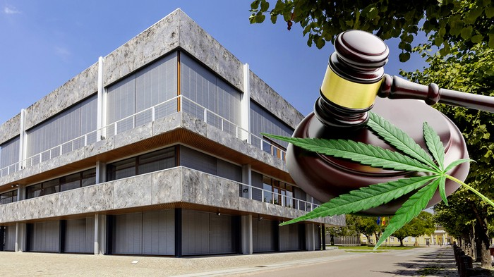 Vielleicht darfst du bald legal kiffen – dank Verfassungsgericht