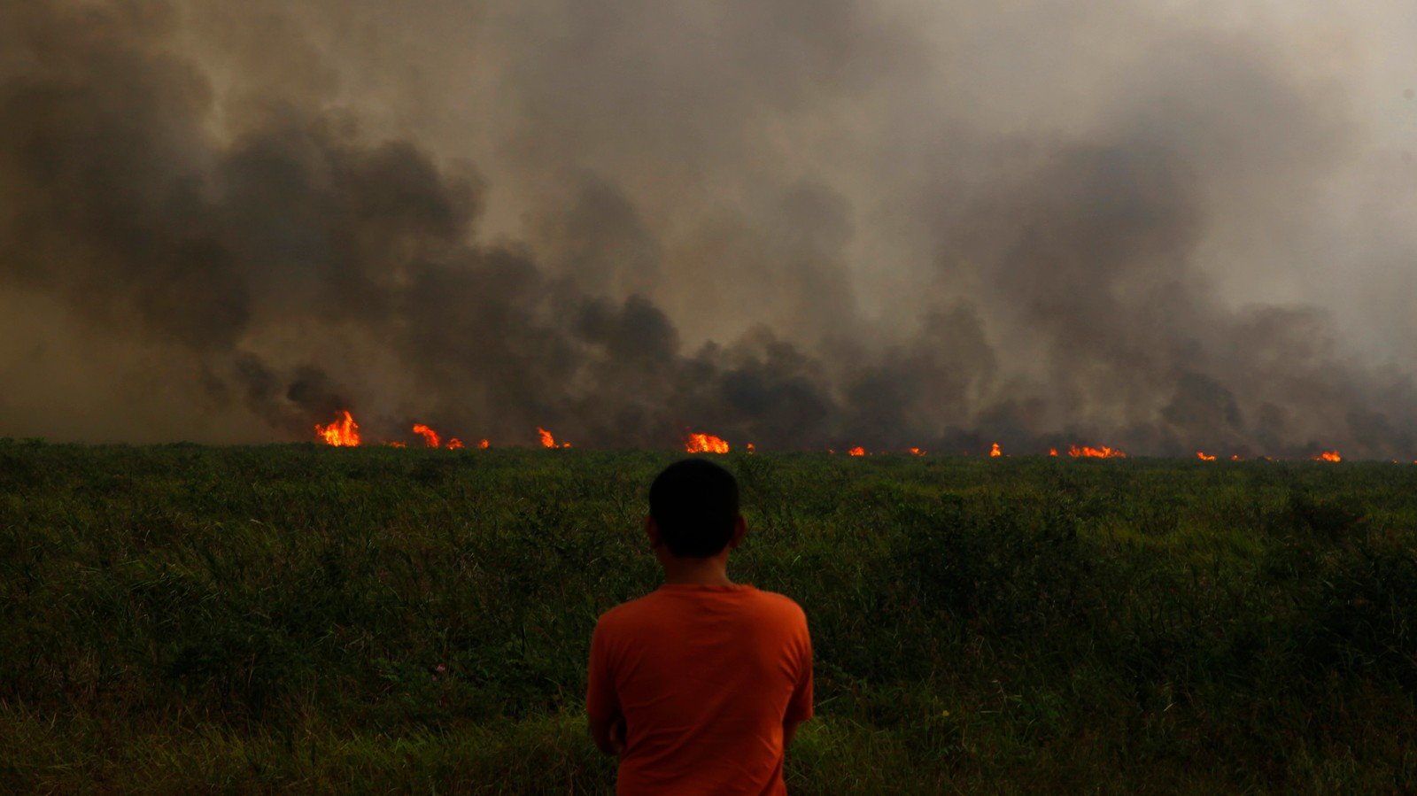 We Meet the People Burning Down Indonesia's Forests