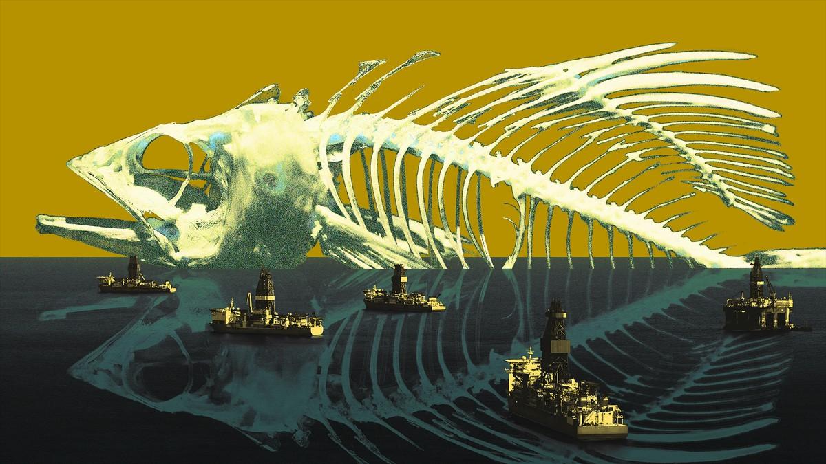 Ecco cosa succederà quando anche l'ultimo pesce negli oceani si sarà estinto