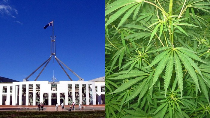 Australian Government Wants the ACT to Prove Legalising Weed is a Good Idea