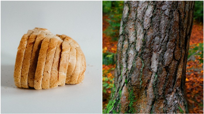 There's a Subreddit About Stapling Bread on Trees