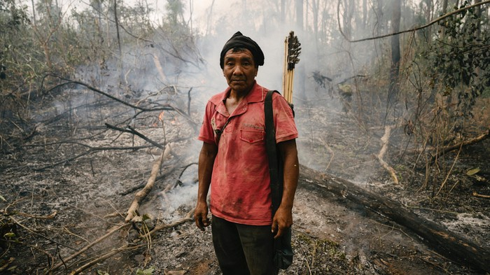Why the Amazon Is Really on Fire — and Why It's Going to Keep Burning
