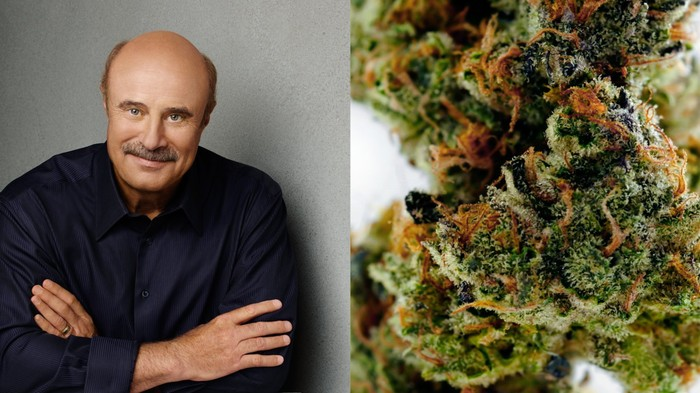 Dr. Phil Thinks Smoking Weed Makes You Violent and Lowers IQ