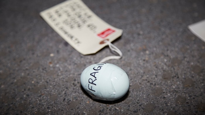 We Posted an Egg, to See How Far You Can Push the Royal Mail