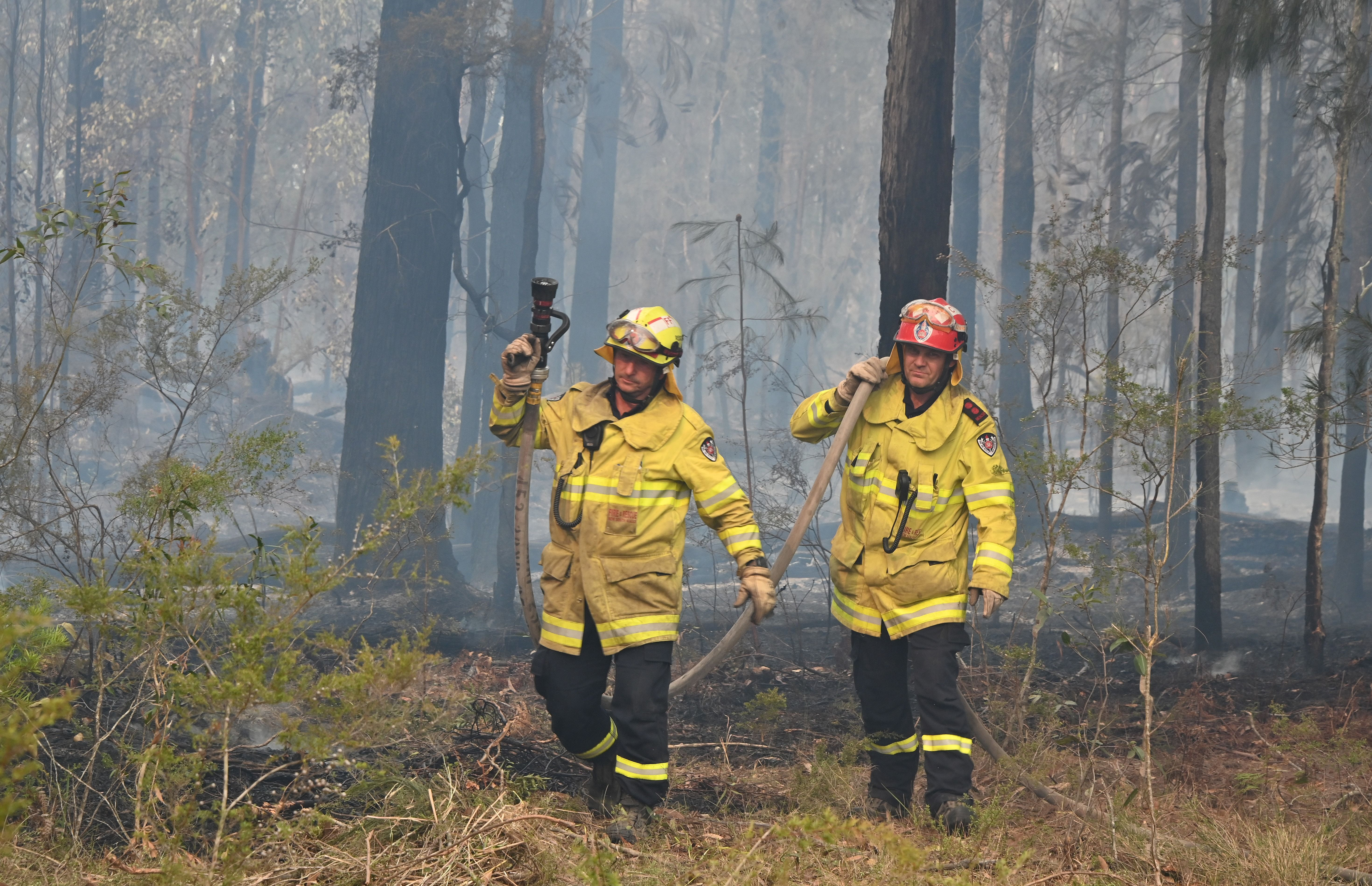 , Australia Is Battling Some of the Most Dangerous Wildfires It's Ever Seen, Saubio Making Wealth