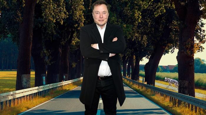 Alles, was Elon Musk über Brandenburg wissen sollte