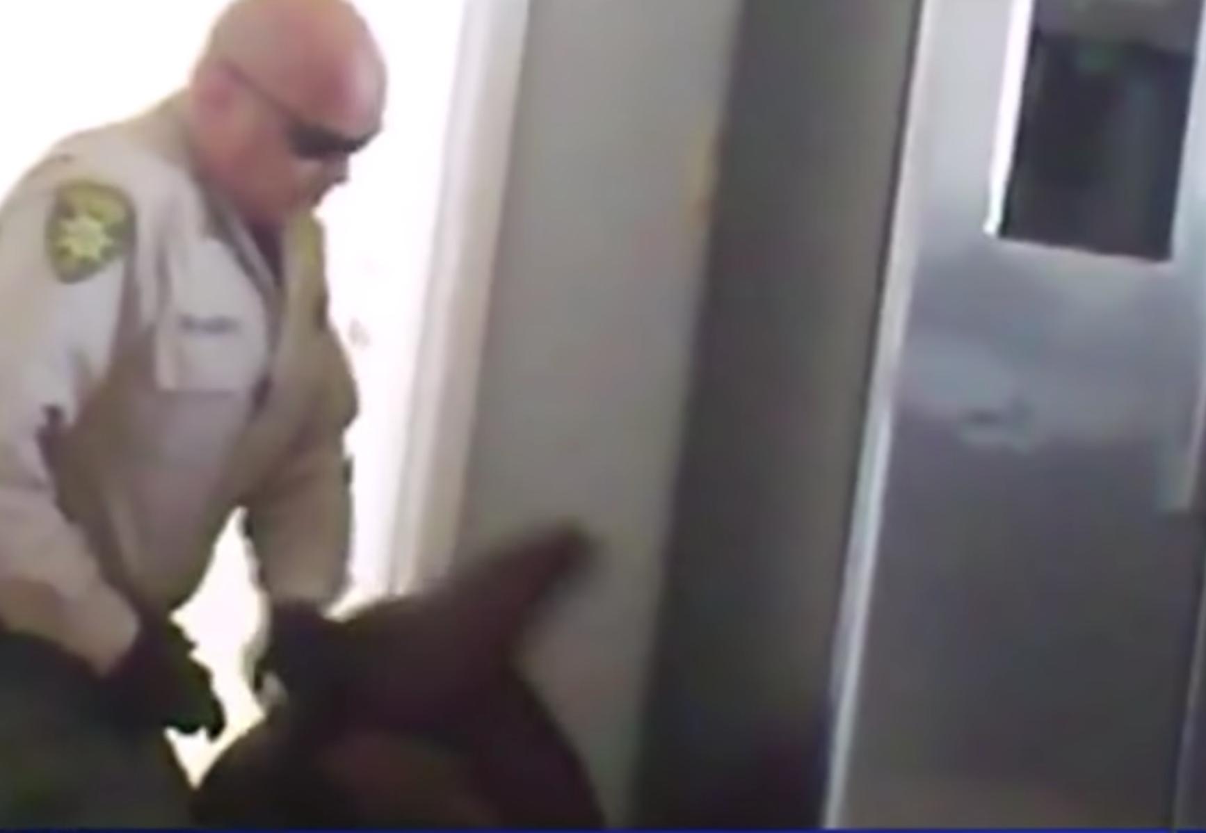 , Disturbing Video Shows Deputy Wrestling Quadruple-Amputee Teen to the Ground, Saubio Making Wealth