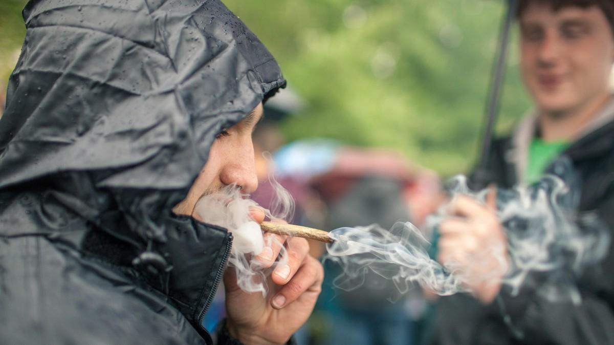 Why Medical Cannabis Isn