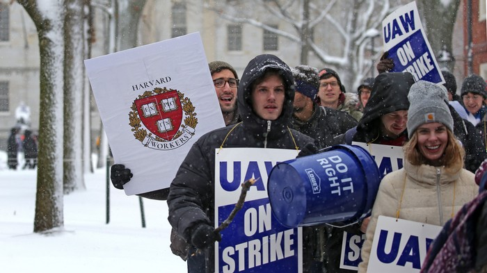 When Students Are Striking at Harvard, You Know Class Rage Is Peaking